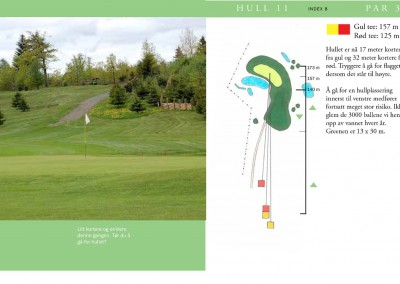 Hull 11 (Par 3, Indeks 8)